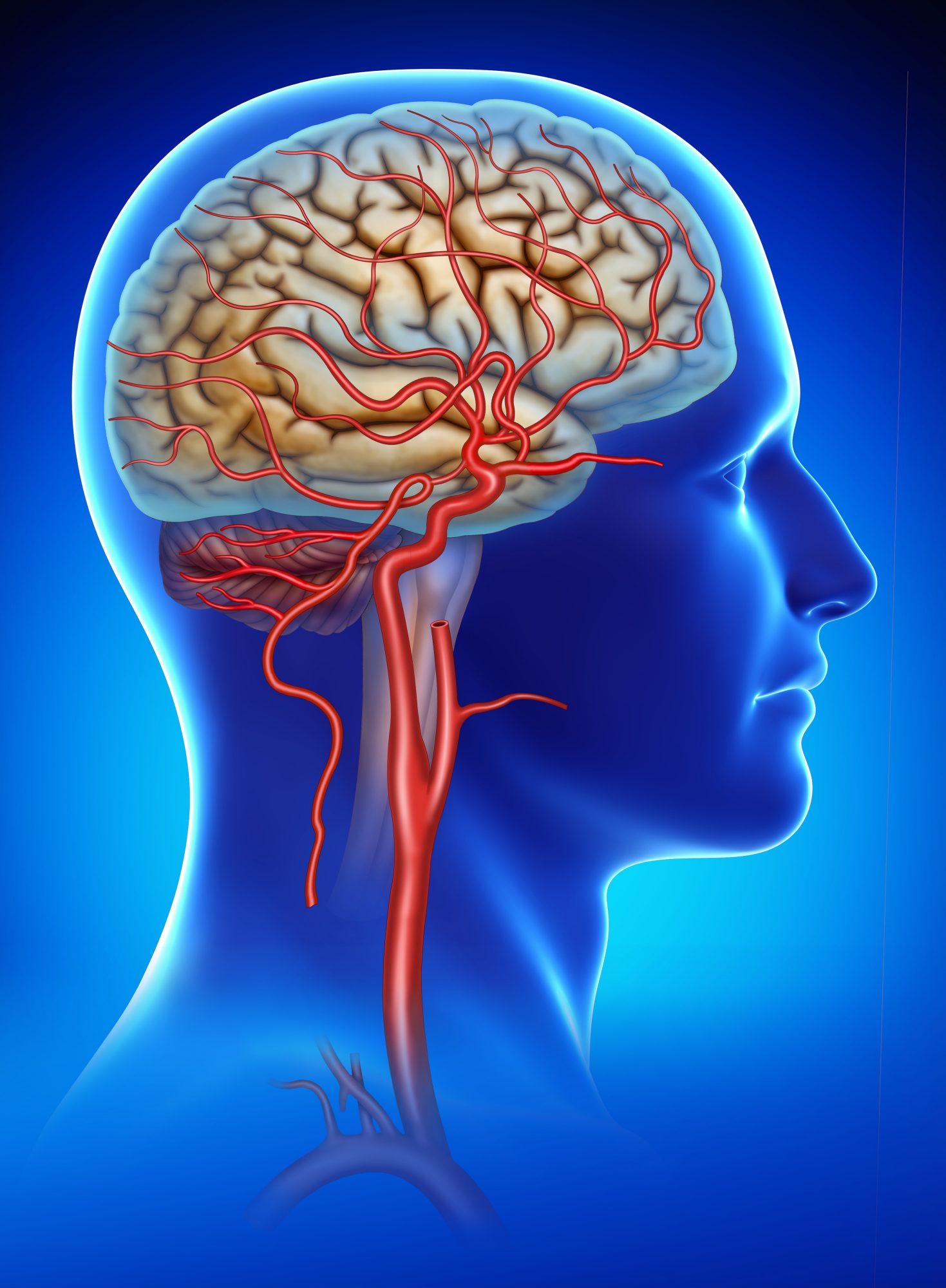 spasme ale articulațiilor tratamentului creierului Preparate pentru repararea cartilajului Preț